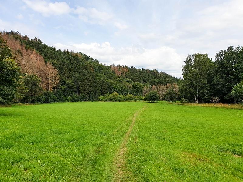 Siegsteig Etappe 13 von Alsdorf nach Kirchen